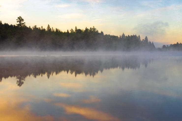 algonquin morning mist