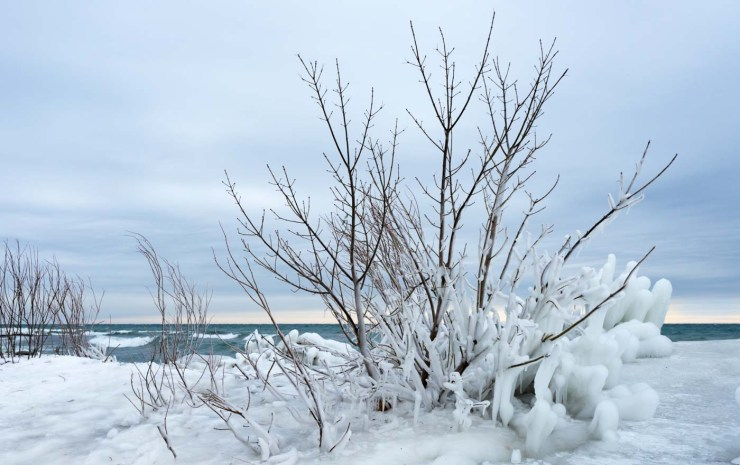 frozen beaches